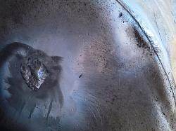 Barrels explode after being welded together - GIF-wp_20200529_13_57_15_richftrr.jpg