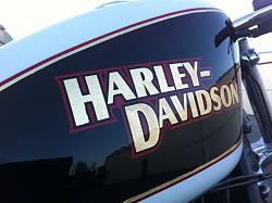 BikeBuilds.net: 2003 Harley-Davidson 1200 Sporty by Flavourless-hdbe5.jpg