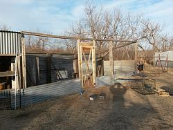 Chicken coop and pen-20180205_171350.jpgss.jpg