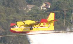 Fire bomber plane puts out truck fire - GIF, photos, and video-fire-9-03-09-14.jpg