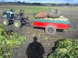 Garden  mini tractor 4x4-30092013447.jpg