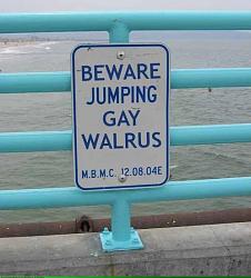 Guys, we need a challenge - welding respirator-gay_walrus.png