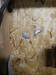 Hard Drive Magnets-garage-chisel-magnets.jpg