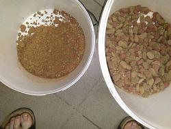MAKE YOUR HOMEMADE ANIMAL FEED-34499461_2465460350146510_7416833883632566272_n.jpg