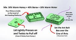 Mini Ant Bait Box-borax-honey-ant-bait-box.jpg