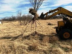 Root remover heavy equipment attachment - GIF-20190121_125355.jpgaaa.jpg