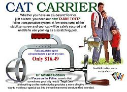 Tool quiz-cat-carrier.jpg