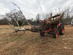 Tractor Brush/Tree Grapple-grapple-tree.jpg