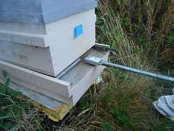 Vaporizor for Varroa Mites  DYI-small-hive-shot.jpg