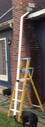 Yellow Jacket Exterminator-ladder.png