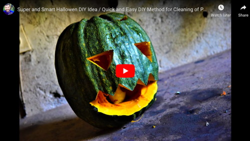Pumpkin Seed Cleaning Vacuum