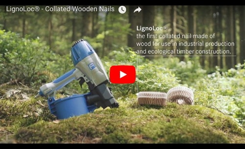 Wooden Collated Nails