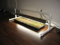 Grow Light Stand