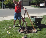 Tree Root Removal Method