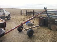 Portable Corn Auger